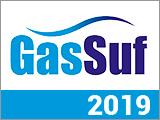17-ая Международная выставка GasSuf 2019